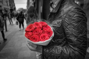 Mann_roses-colorful-floral-428611
