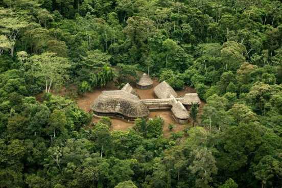 AmazonicaSpendenYorkHovest01